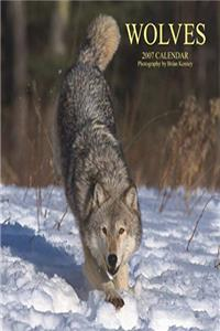 Free eBook Wolves Calendar 2007 download