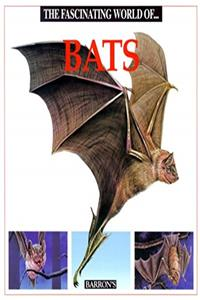 Free eBook The Fascinating World Of...Bats download